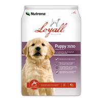 Loyall Puppy Formula Dry Dog Food 40lb