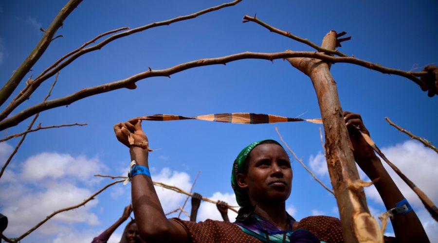 Efficacité, redevabilité et rapidité des opérations humanitaires : Réflexions du terrain sur la mise en œuvre de l'Agenda de Transformation.