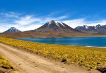 Camino hacia las Lagunas Altiplánicas en Atacama