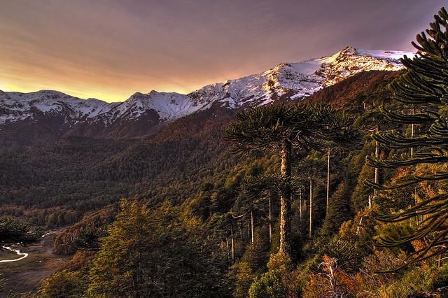 parque-nacional-tolhuaca