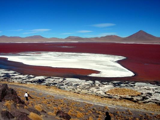 Laguna de color rojo en el camino hacia el Salar de Uyuni