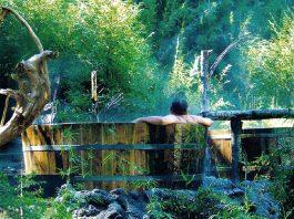 Hombre se baña en terma rustica en medio de bosque