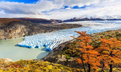 glaciar-grey-otoño