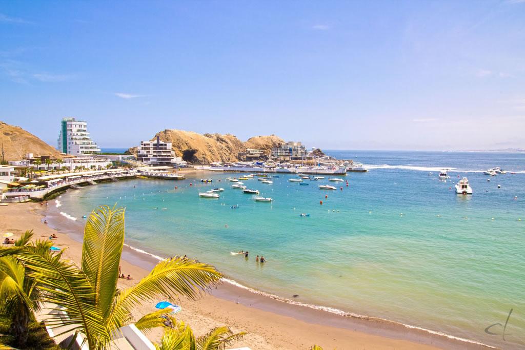 Playa turquesa con palmeras