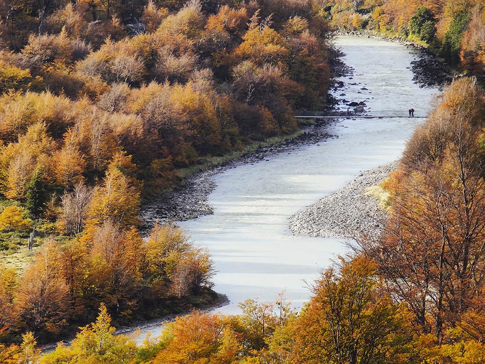 Puente y arboles en otoño