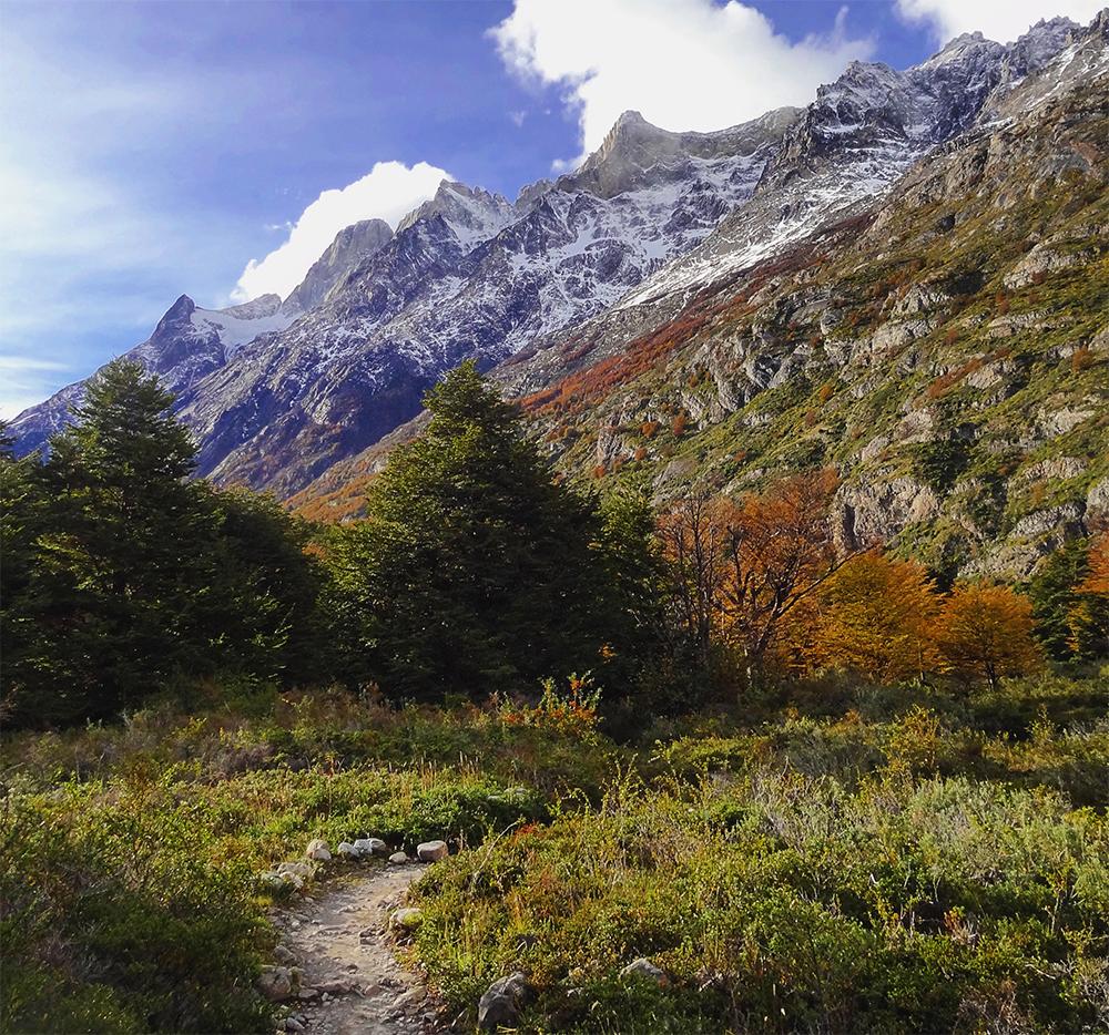 Colores otoñales en la Patagonia