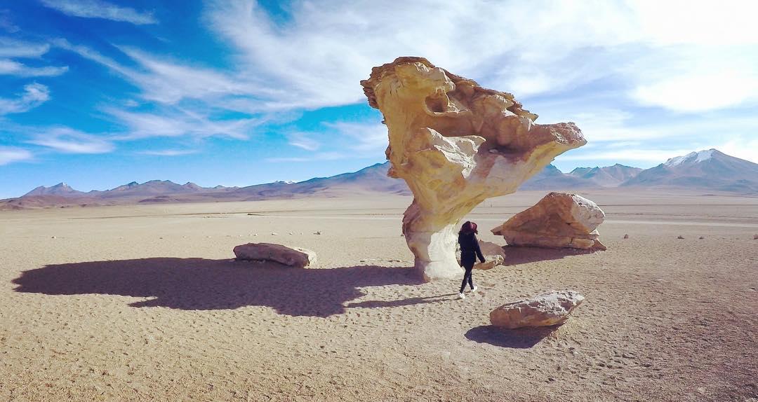 Roca con forma de árbol en el desierto boliviano