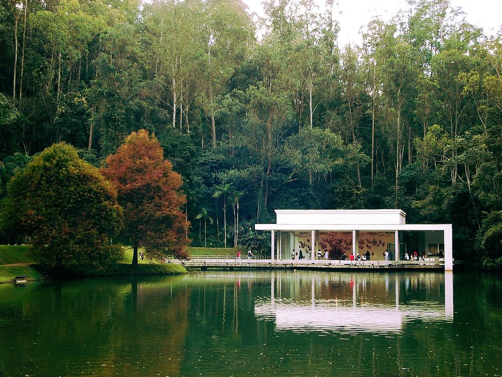 Casa blanca en medio de bosque verde y laguna