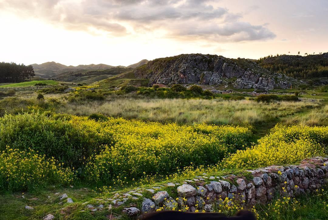 Pared de rocas frente a flores y ruinas Inca