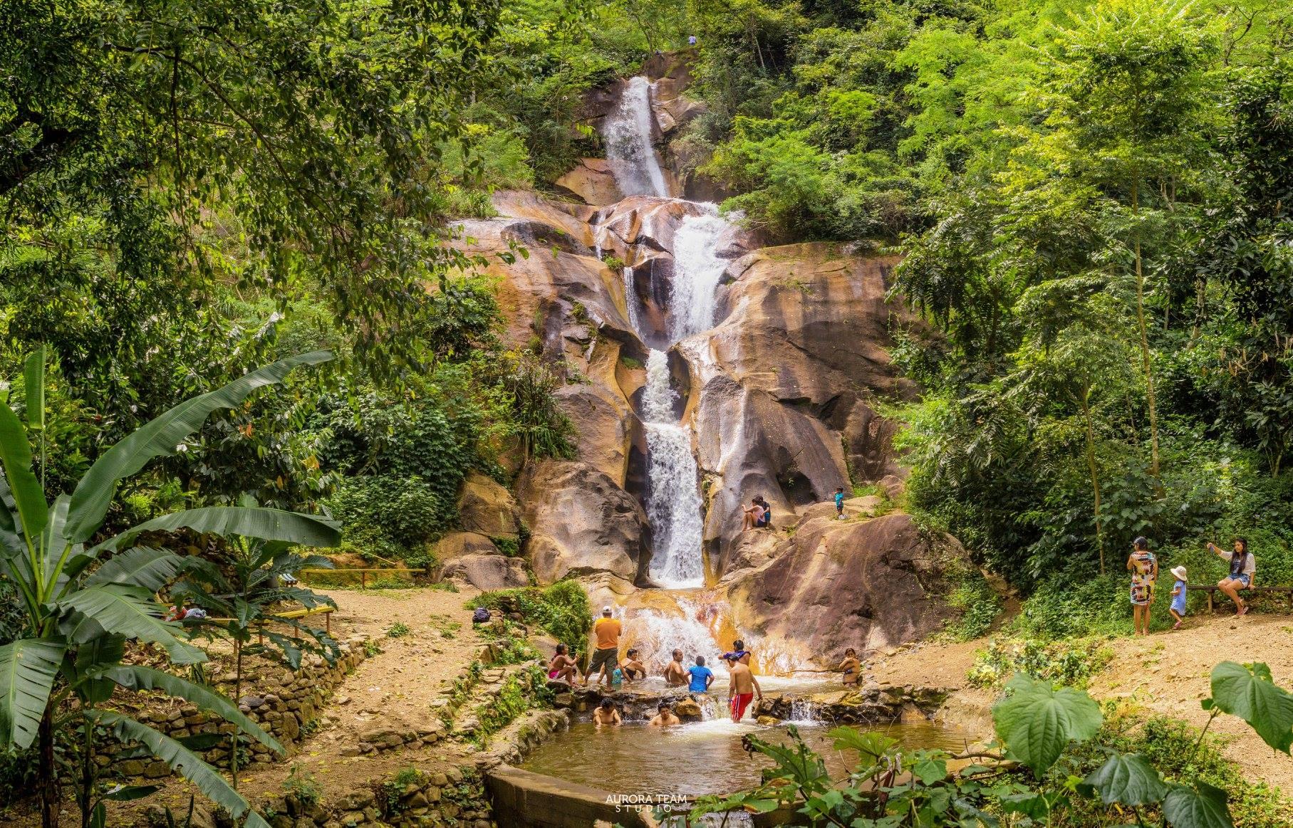 catarata y selva en latinoamérica