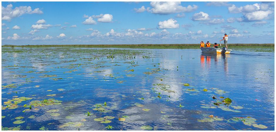Pequeña barcasa en medio de un pantano