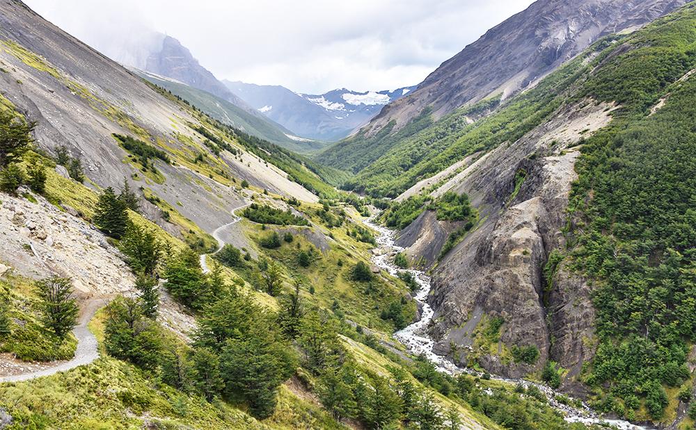 Valle con árboles y río y sendero hacia Base Torres