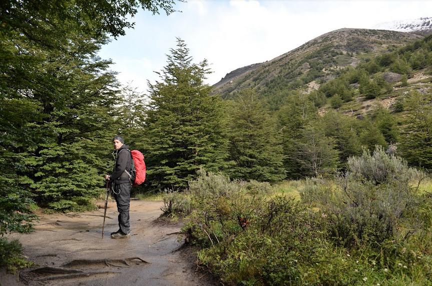 Viajero caminando en un sendero en el bosque