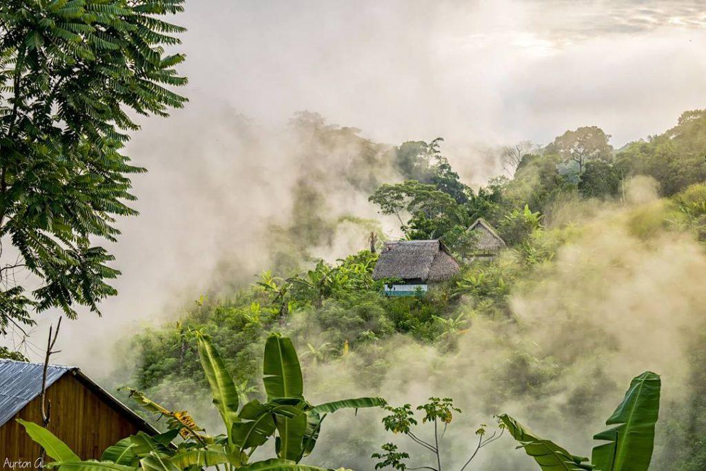 Casas en medio del amazonas con neblina