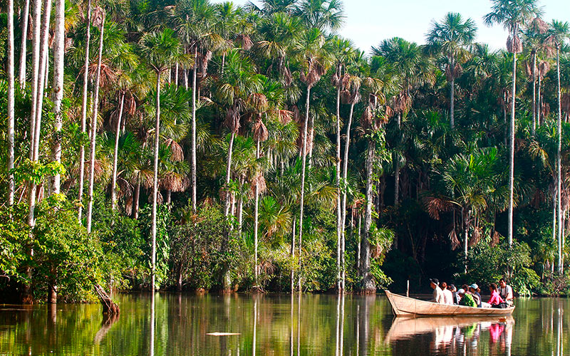 Personas navegando en lago en la selva en puerto maldonado