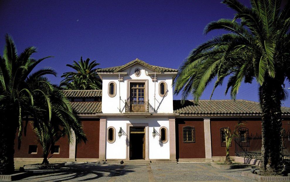 Frontis de un museo al lado de palmeras