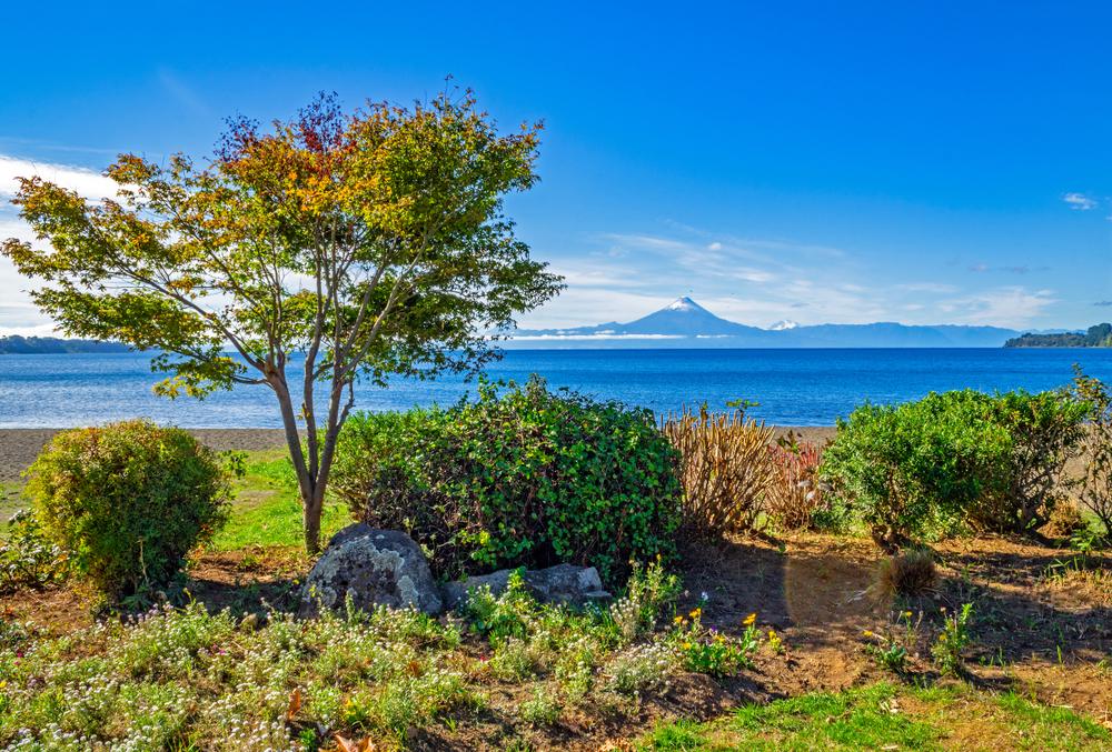Lago con vegetación y volcán de fondo, uno de los más recomendados por tripadvisor
