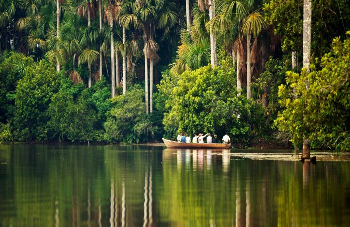 Viajeros navegando por lago sandoval en amazonas peruano