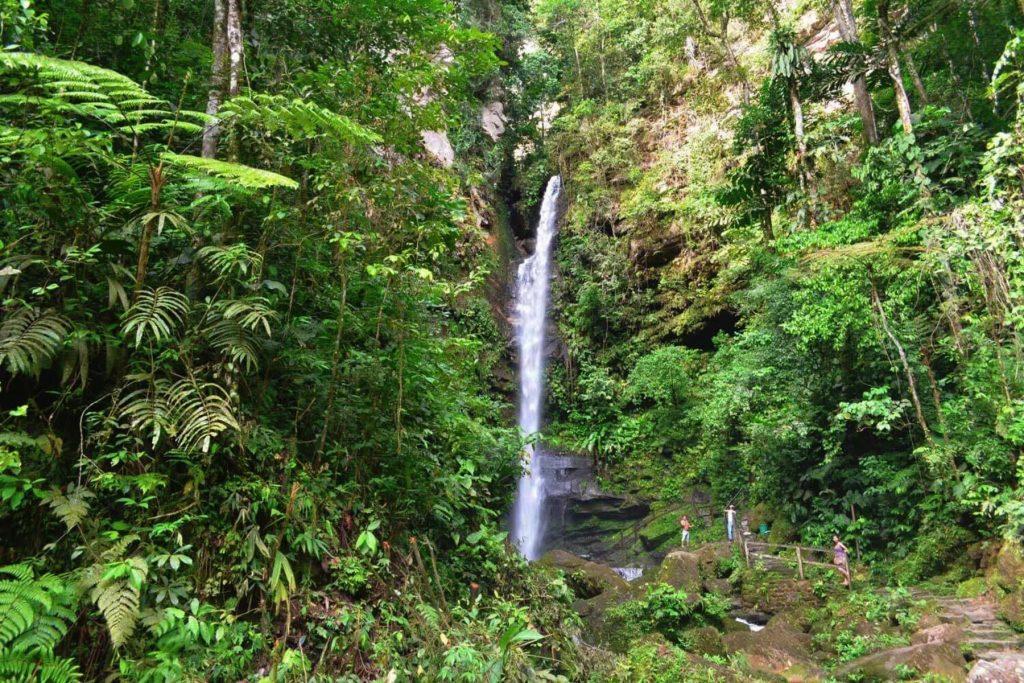 Catarata en la selva de tarapoto