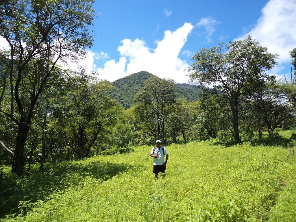 Hombre en medio de vegetación y cerros