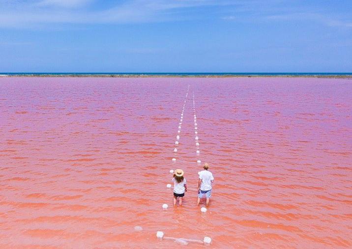 Pareja enmedio de mar color rosa