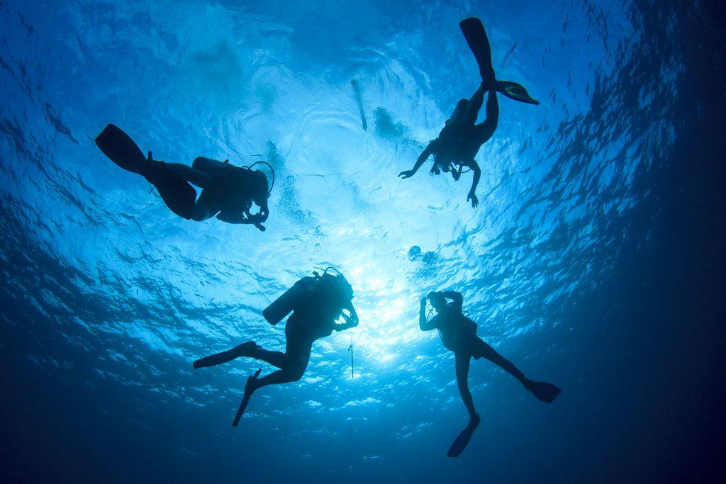 Cuatro buceadores bajo el agua en máncora