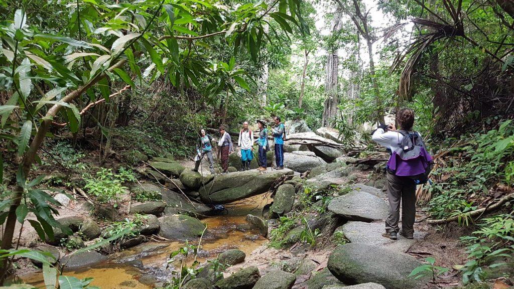Senderistas en rocas en medio de la selva