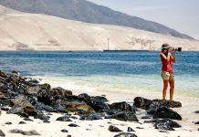 Mujer tomando fotografía en la playa