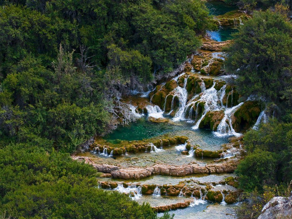Pequeñas cascadas enmedio de bosque