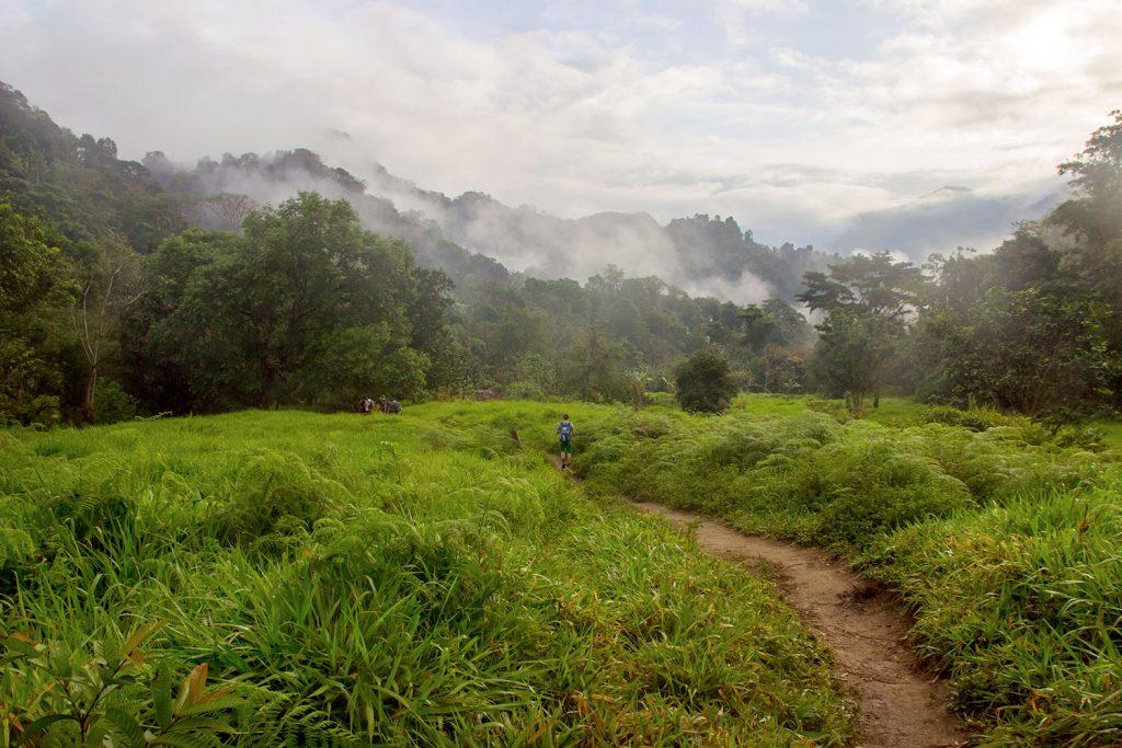 Viajero realizando caminata por enmedio de la selva colombiana