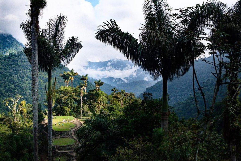 Ciudad perdida en medio de palmeras y la selva colombiana