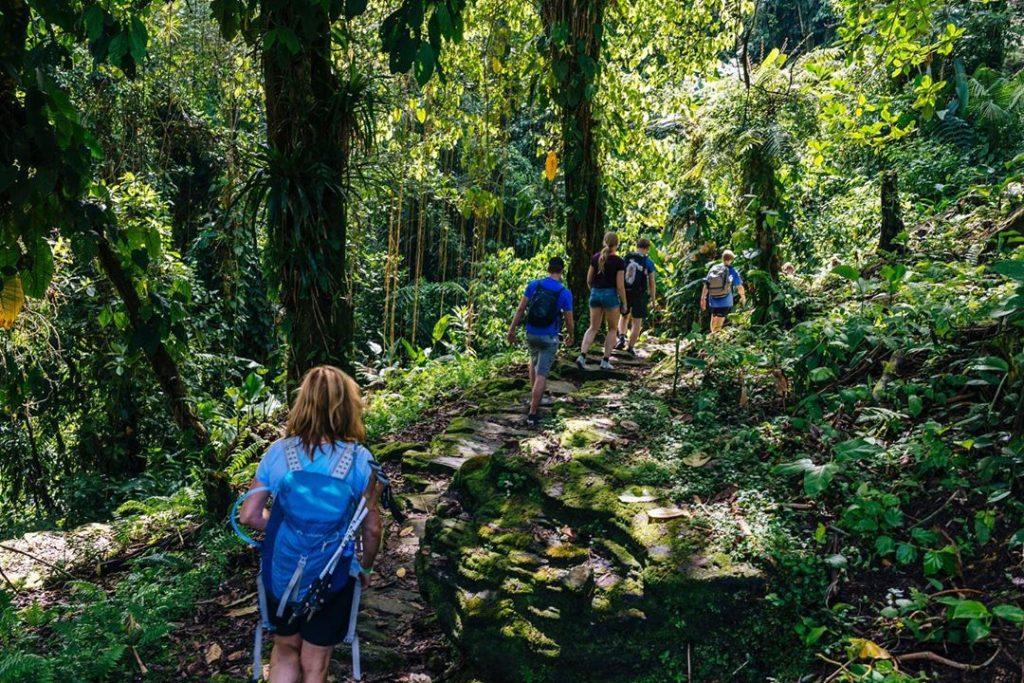 Viajeros caminando por sendero hacia la ciudad perdida de colombia