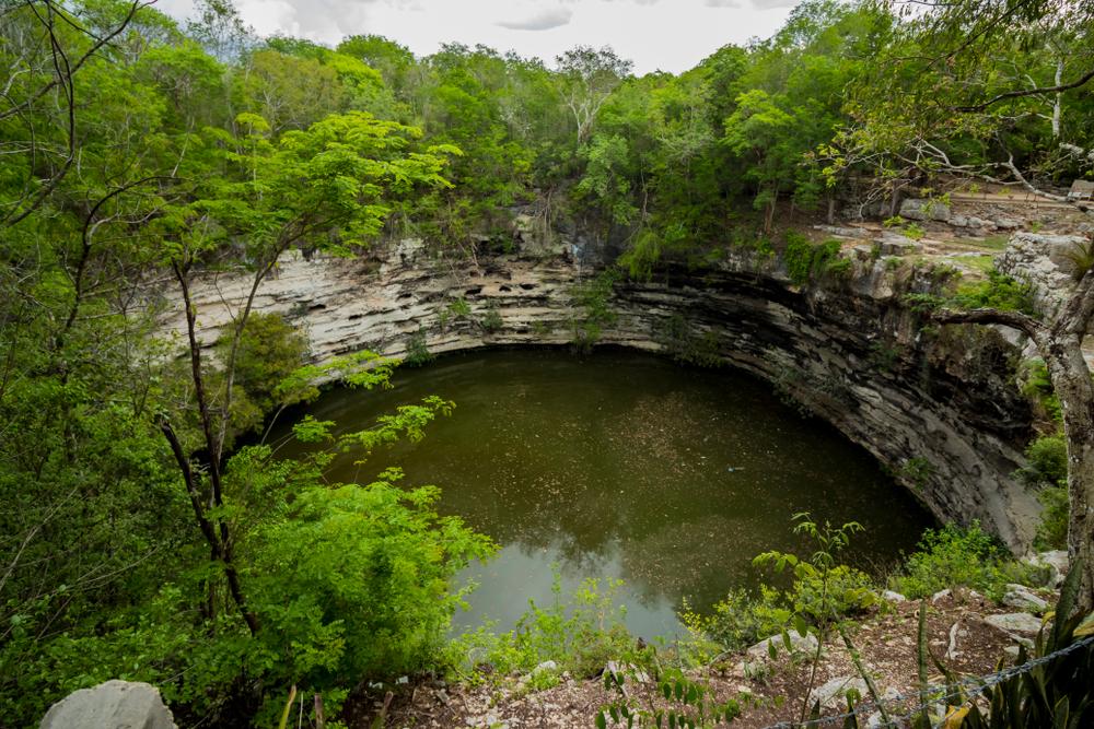 Cenote de color verde enmedio de la selva en Chichen Itzá