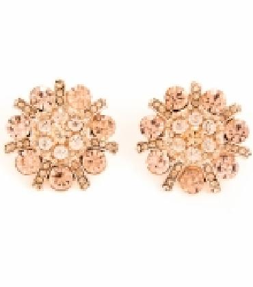 Image of Chunky Clip On Earrings