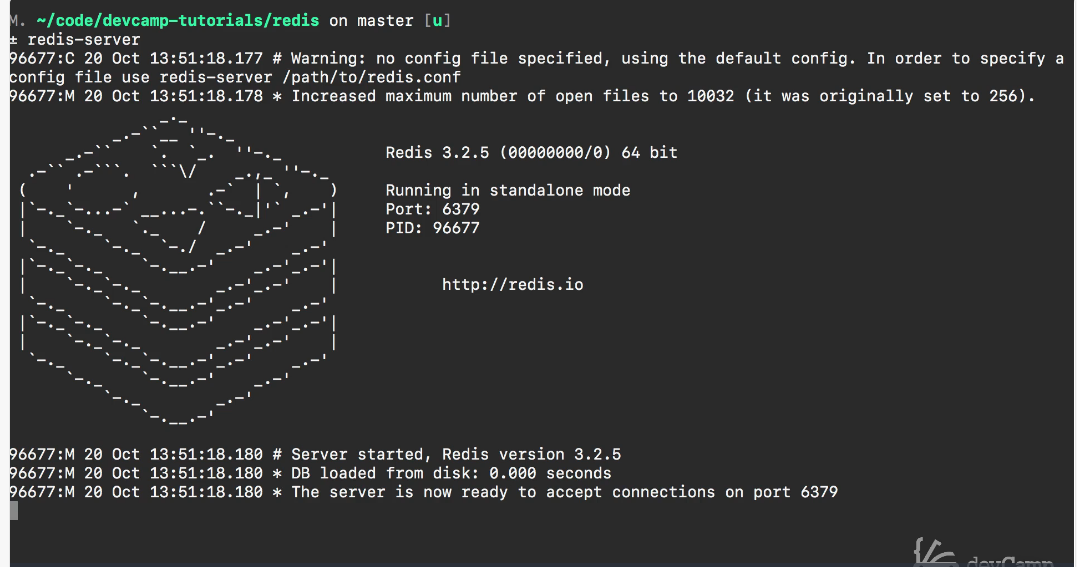 How to Install Redis and Run the Redis CLI on a Mac