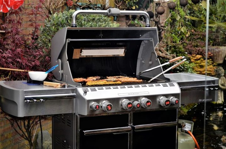 The 10 Best Small Gas Grills