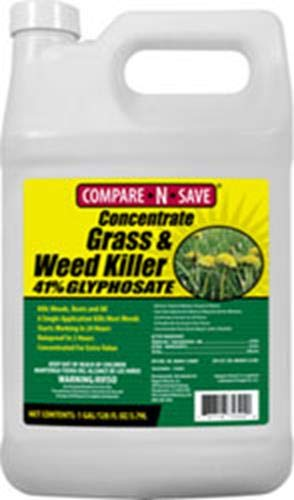 10 best Weed Killers in the Market