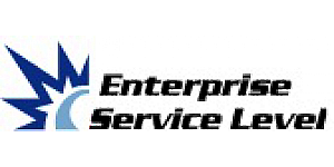 Enterprise Service Level