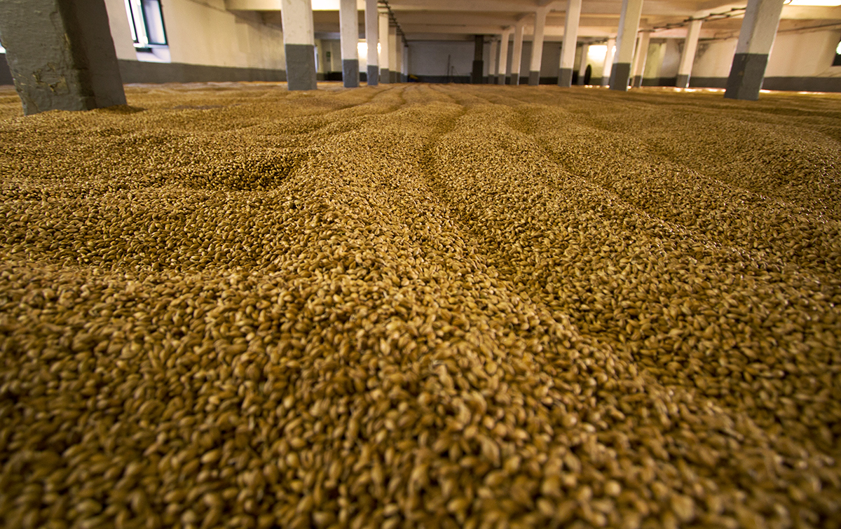 Whiskey Explained: Malting floor