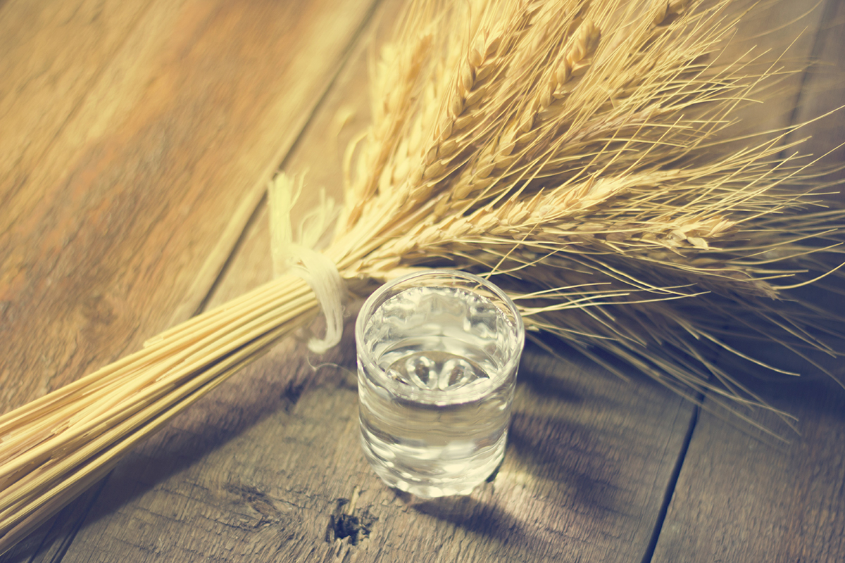 Vodka Distilled: Vodka and Wheat