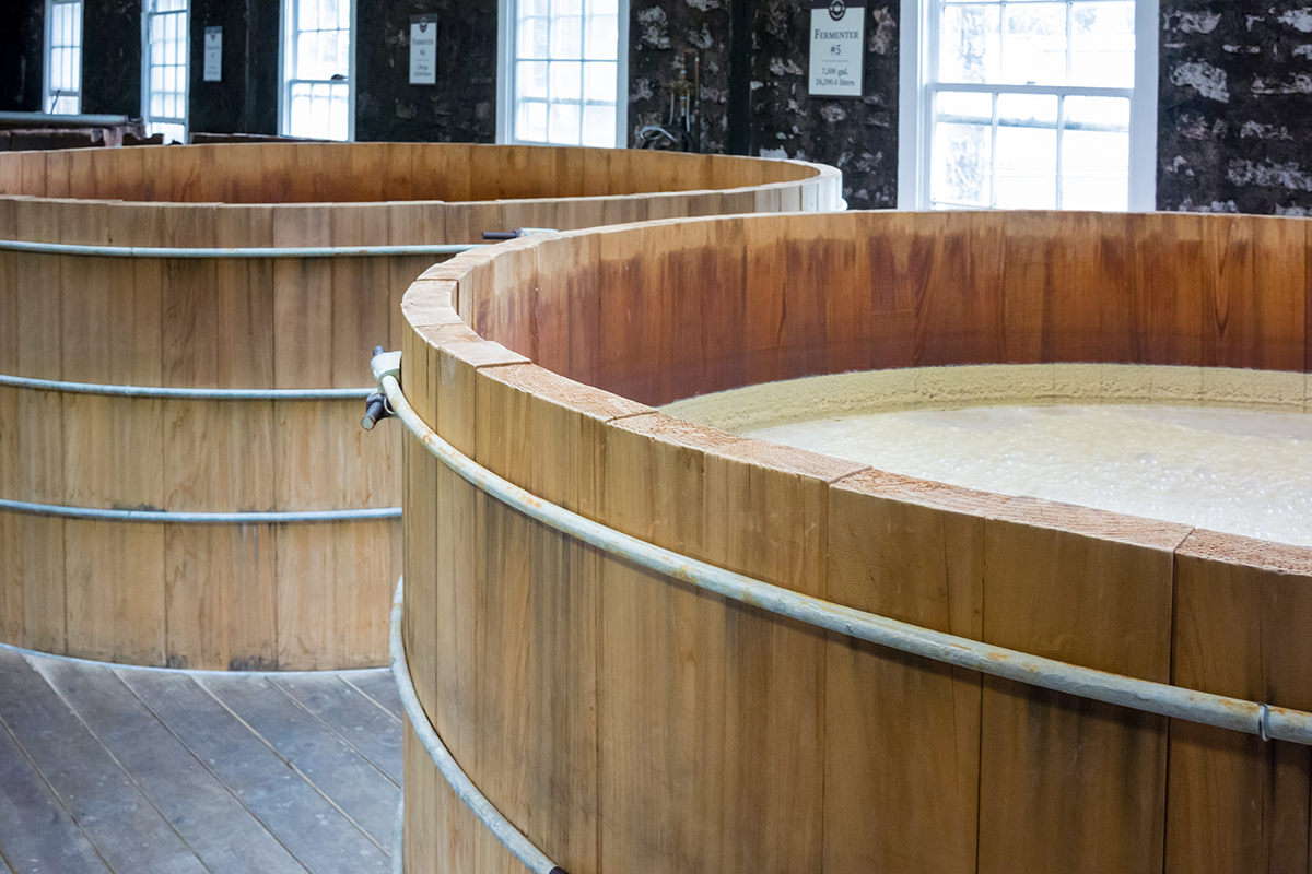 Scotch Fermentation: Wooden Washbacks
