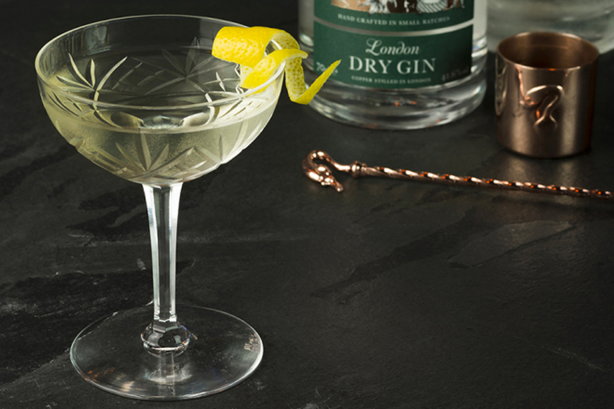 Gin and Vermouth Pairing: Sipsmith Gin martini