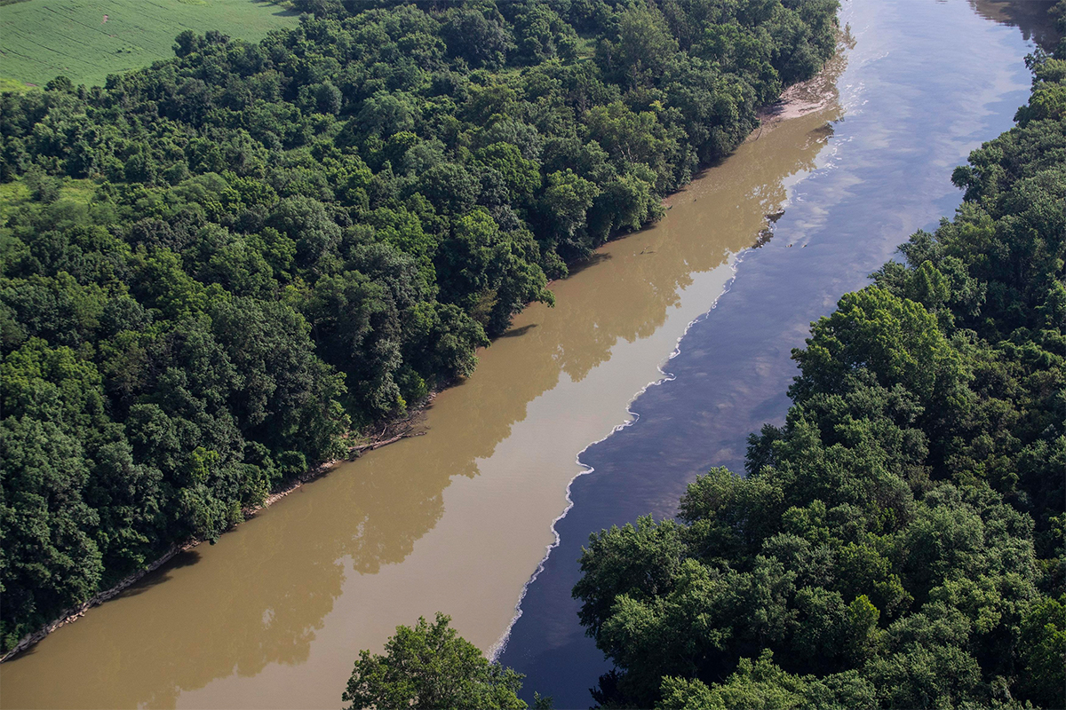 Jim Beam Spill Kills Huge Number Of Fish On Way To Ohio River