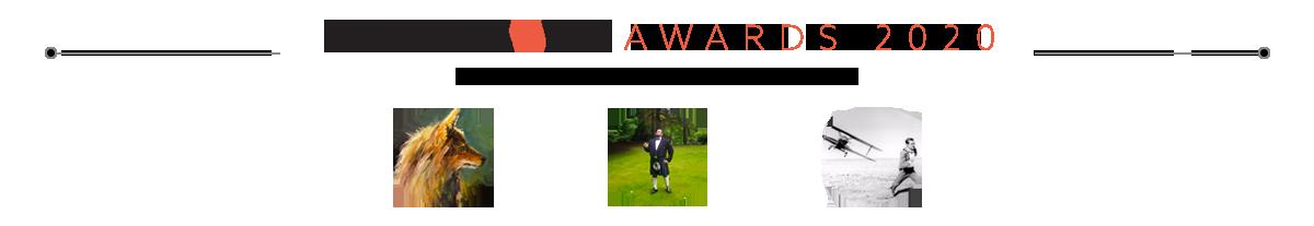 Distiller 2020 Awards: User Awards
