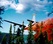 Smokejumper Visitor Center 235
