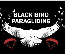Black Bird Paragliding