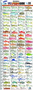Picture of Afn Fish Guide Ruler Florida Usa
