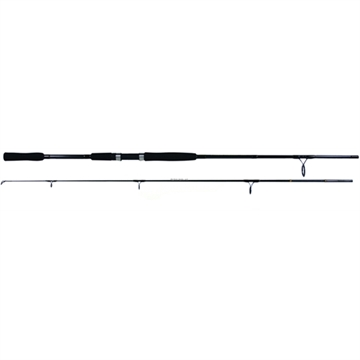 Picture of Beach Runner Surf Spinning Rod 11' 2Pc MH 20-40Lb Graphite Eva Grips