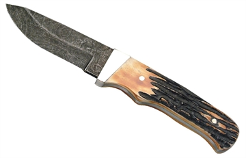 """Picture of Bear & Son 548D India Skinner Fixed 2.375"""" Damascus Drop Point Stag"""