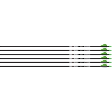 Picture of Beman Arrow Ics Hunter Classic 340 W/Xpv Vanes 6-Pack